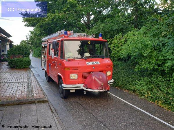Techn. Hilfeleistung vom 20.06.2019  |  (C) Feuerwehr (2019)