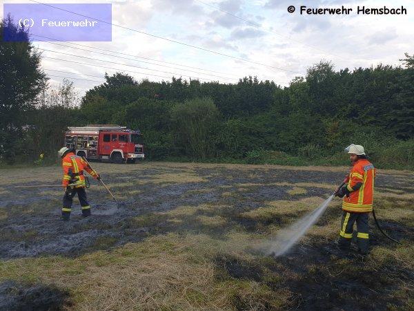 Brandeinsatz vom 05.08.2019  |  (C) Feuerwehr (2019)