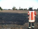 19.08.2018 - Flächenbrand